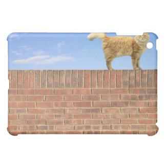 Gato del jengibre que se coloca en la pared de lad