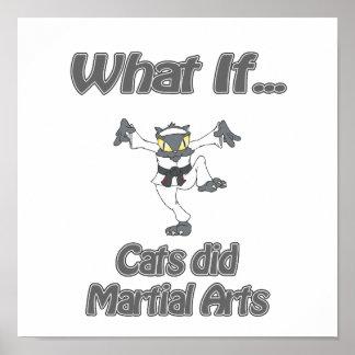 Gato del karate póster