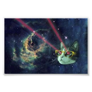 Gato del laser con los vidrios en espacio cojinete