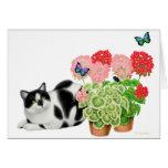 Gato del Moxie y la tarjeta de las mariposas