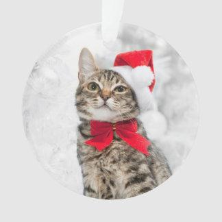 Gato del navidad en el gorra de Santa rojo cerca