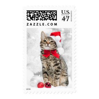 Gato del navidad en el gorra de Santa rojo cerca Estampillas
