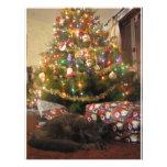Gato del navidad flyer personalizado