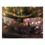 Gato del navidad invitaciones personalizada