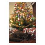 Gato del navidad papelería personalizada