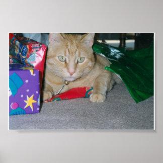 Gato del navidad póster