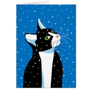 Gato del navidad que mira fijamente los copos de n tarjetas