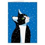 Gato del navidad que mira fijamente los copos de tarjeta de felicitación