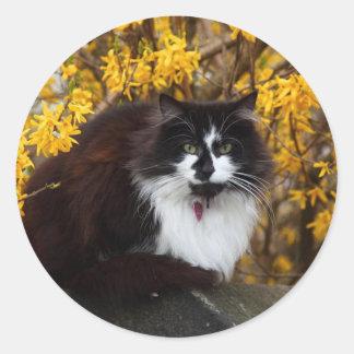 Gato del otoño pegatina redonda