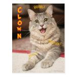 Gato del payaso tarjeta postal