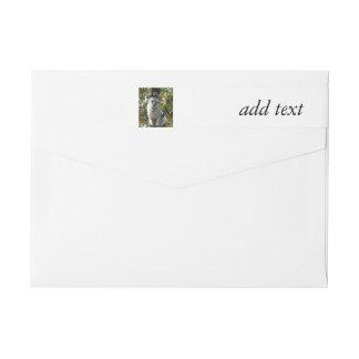 Gato del peregrino de la acción de gracias etiquetas postales
