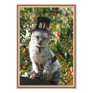 Gato del peregrino anuncio