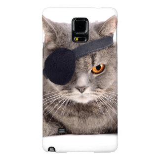 Gato del pirata