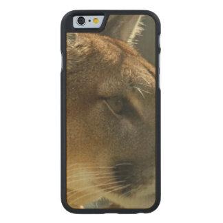 Gato del puma funda de iPhone 6 carved® de arce