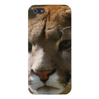 Gato del puma iPhone 5 funda