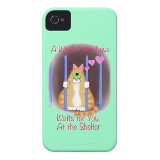 Gato del refugio Case-Mate iPhone 4 protectores