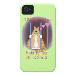 Gato del refugio iPhone 4 cárcasa