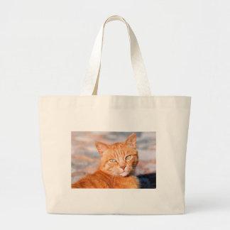 Gato del rojo del retrato bolsa