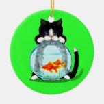 Gato del smoking con el ornamento de los pescados ornato
