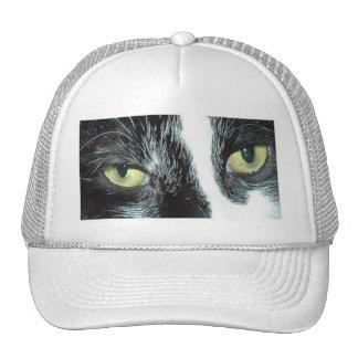 Gato del smoking gorras