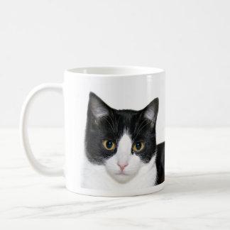 Gato del smoking taza de café