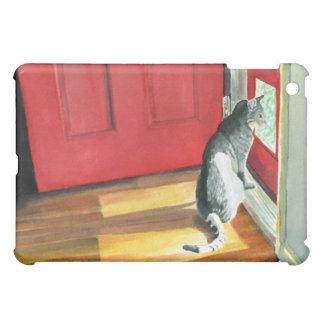 Gato del th de Quigley