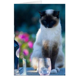 Gato del vino tarjeta de felicitación