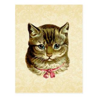 Gato del vintage con el arco rosado postal