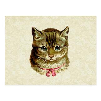 Gato del vintage con el arco rosado tarjeta postal