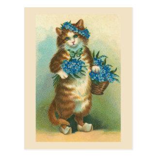 """""""Gato del vintage con la postal de las nomeolvides"""