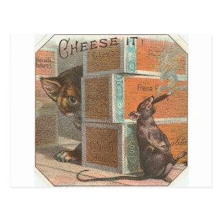Gato del vintage que mira la rata que fuma tarjeta postal