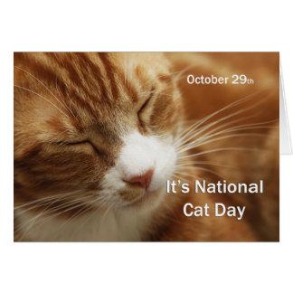 Gato día 29 de octubre nacional tarjeta de felicitación