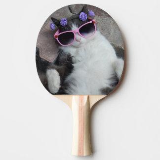 Gato divertido con los vidrios rosados pala de tenis de mesa