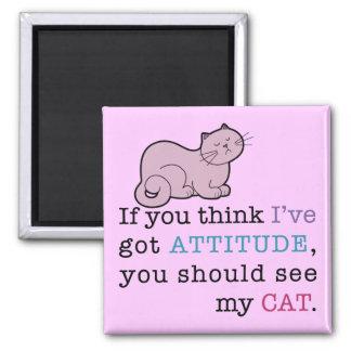 Gato divertido de la actitud de mi gato iman