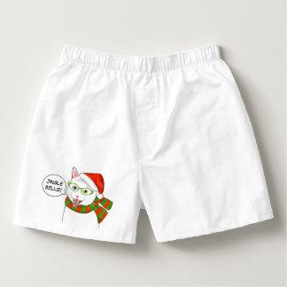 Gato divertido de los cascabeles del navidad de calzoncillos