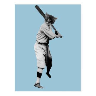 gato divertido del béisbol del vintage postales