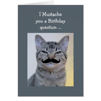 Gato divertido del cumpleaños de la pregunta del tarjeta de felicitación