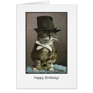 Gato divertido del cumpleaños en gorra tarjeta de felicitación
