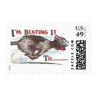 Gato divertido en el funcionamiento sello postal