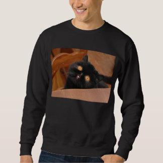 Gato divertido suéter
