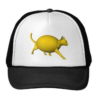 Gato Dulce-Amargo del limón Gorro