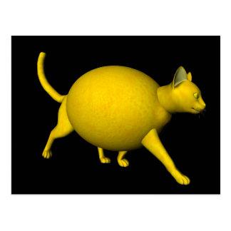 Gato Dulce-Amargo del limón Postales