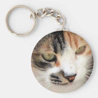 Gato dulce de cara mayor llavero redondo tipo pin