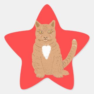 Gato dulce en casi everythiing imaginable pegatina en forma de estrella
