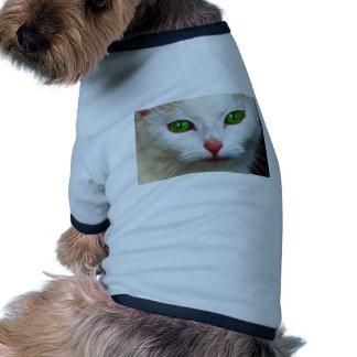 Gato dulce camiseta con mangas para perro