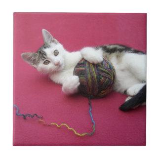 Gato e hilado azulejo cuadrado pequeño