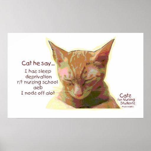 Gato él dice - la privación del sueño de la escuel impresiones