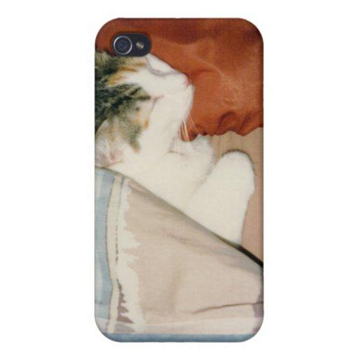 Gato el dormir iPhone 4 carcasas