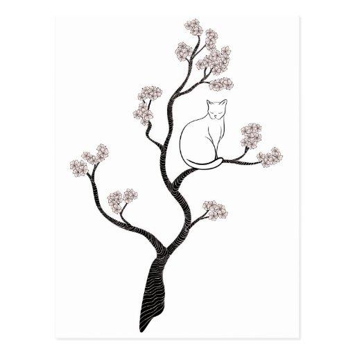 Gato en árbol de la flor de cerezo tarjetas postales
