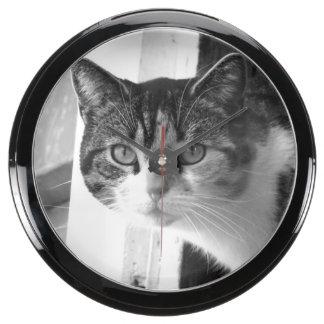 Gato en blanco y negro relojes aquavista